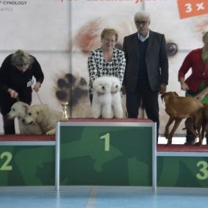 wystawy_bulgaria_2017_5
